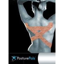 Posturepals X Design Large
